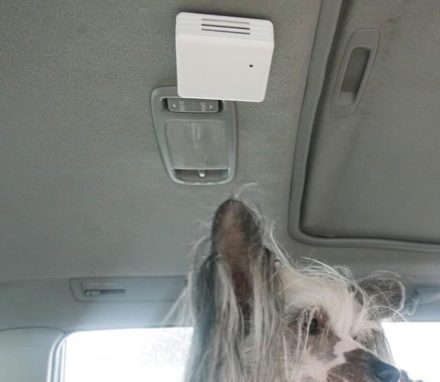 KoolDog håller koll på temperaturen