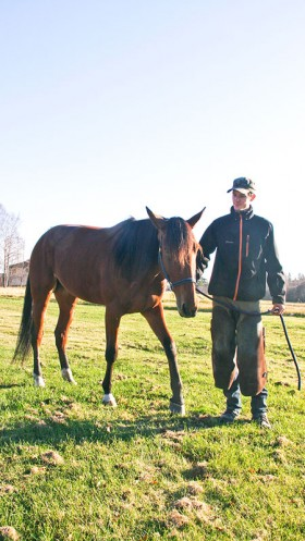Den egna hästen Den där Mary skodd och klar. Det blev Aluminiumskor dagen till ära.