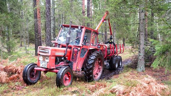 Full fart i skogen med en gammal BM och Kranman T5000.