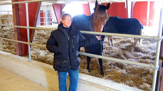 Johanna Frieberger har mer än 30 års professionell erfarenhet av hästar och anser att Active Stable är det absolut bästa sättet att hålla häst på.