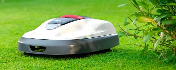 Välskött gräsmatta med automatisk gräsklippare