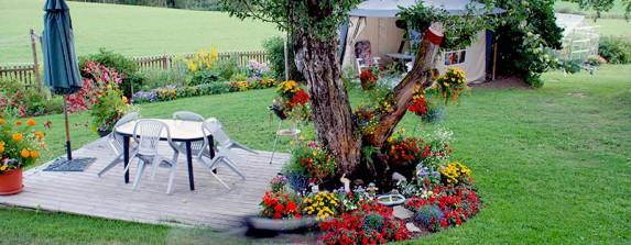 Trädgården ökar värdet på ditt hus