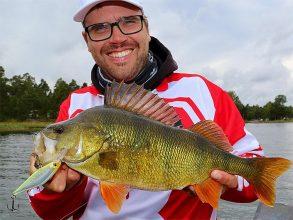 Fiska abborre som Mathias Holgersson