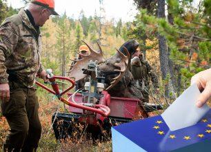 EU-valet 2019: Så tycker partierna i viktiga jaktfrågor