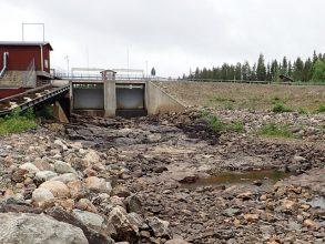 Älvräddare och fiskevänner till attack mot Skellefteå Kraft