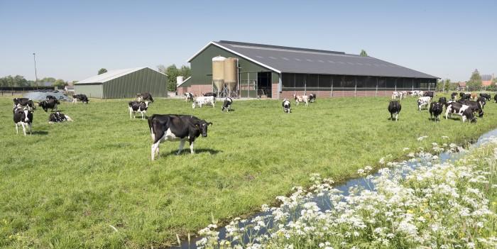 Så ser lantbrukarnas byggplaner ut för 2020