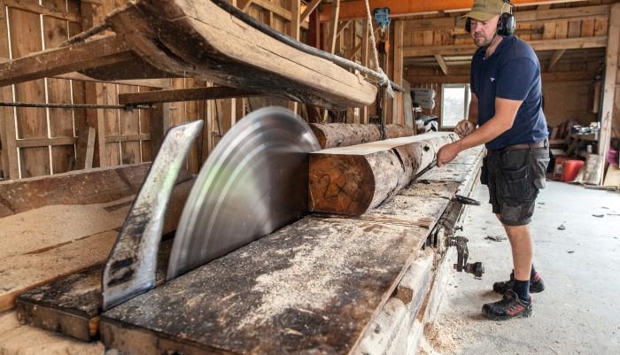Lilla sågverket fixar angripet timmer